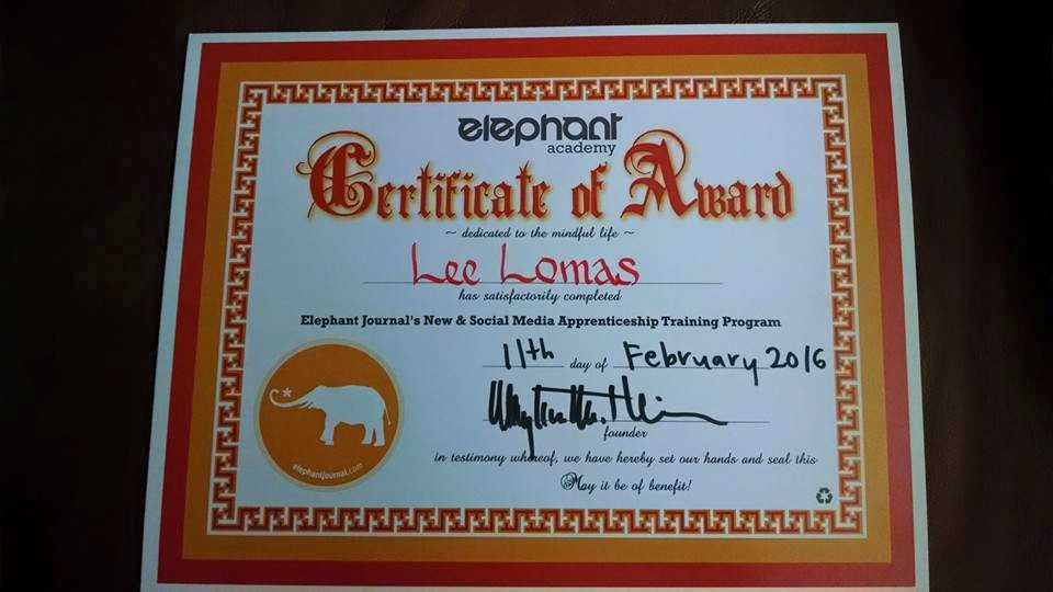 As An Apprentice For Elephant Journal I Increased My Knowledge In